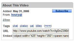 Tela com o endereço do arquivo no YouTube